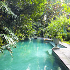 Tropical Pool Pool