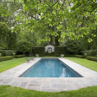 Diseño de piscina clásica, grande, rectangular, en patio trasero