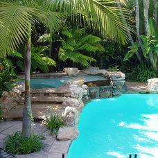 Tropical Pool by Symphony Pools Inc