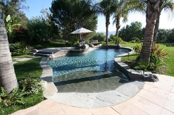Tropical Pool by Symphony Pools Inc
