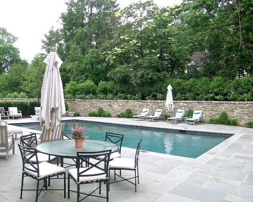 Pool Paver Ideas pool decking design options Traditional Rectangular Pool Idea In Cincinnati