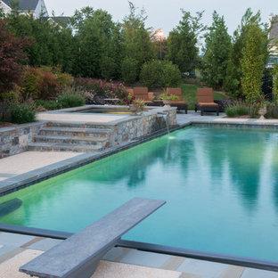 Pool - contemporary rectangular pool idea in DC Metro