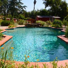 Southwestern Pool by Shannon Malone