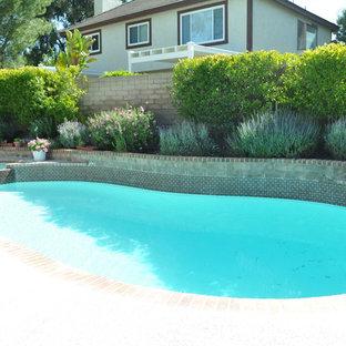 Imagen de piscinas y jacuzzis alargados, clásicos, de tamaño medio, tipo riñón, en patio trasero, con losas de hormigón