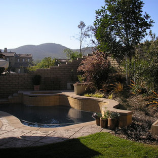 ロサンゼルスの小さいオーダーメイド地中海スタイルのおしゃれなプール (天然石敷き) の写真