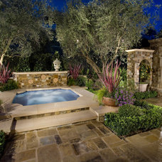 Mediterranean Pool by Mirage Landscape