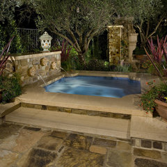 pool by Mirage Landscape