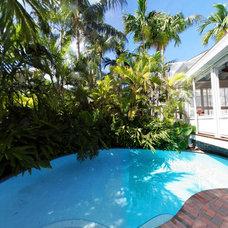 Tropical Pool by Edward DeLeon