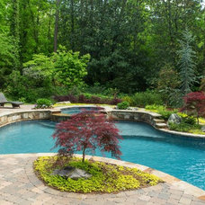 Traditional Pool by Landscape Studio