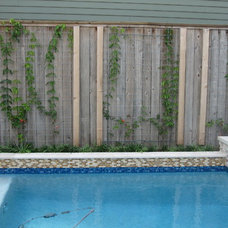 Traditional Pool by Ravenscourt Landscaping and Design LLC