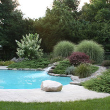 Contemporary Pool by Amy Martin Landscape Design