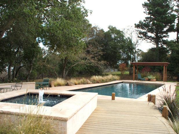 Contemporary Pool by Kikuchi + Kankel Design Group
