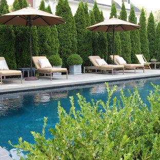ニューヨークの中サイズの長方形トラディショナルスタイルのおしゃれなプールの写真