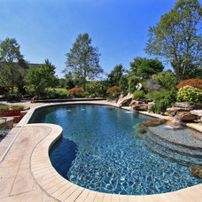 Traditional Pool by Platinum Fine Homes & Estates
