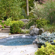 Eclectic Pool by Landscape Perceptions of DiTomaso Design Inc.