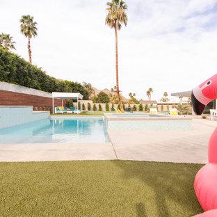 Foto di una grande piscina moderna rettangolare dietro casa