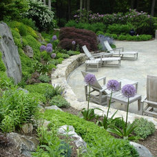Eclectic Pool by Johnsen Landscapes & Pools