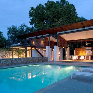 Design ideas for a modern rectangular pool in DC Metro.