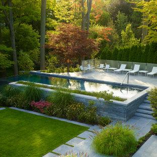 Inredning av en modern rektangulär pool på baksidan av huset, med betongplatta