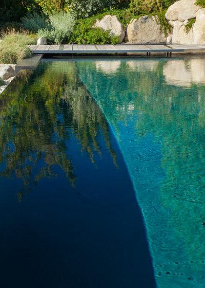 Beach Style Pool by Broadhurst + Associates