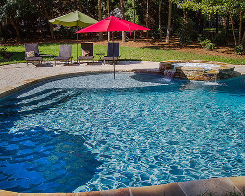 Affordable natural pool design ideas renovations photos for Pool design 974