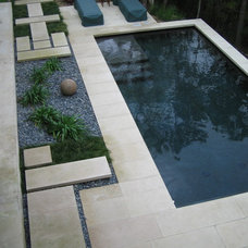 Contemporary Pool by Root Design Company.com