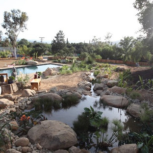 Regeneration Zone and flowing stream