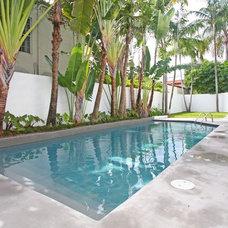 Modern Pool by X3D GROUP LLC
