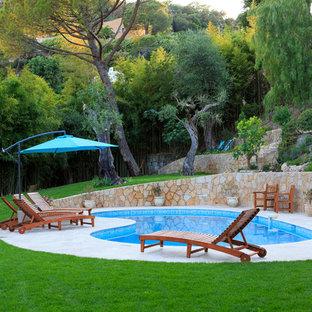 Cette image montre une piscine arrière méditerranéenne en forme de haricot.