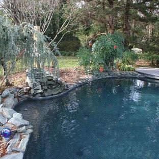 Renovation Pool