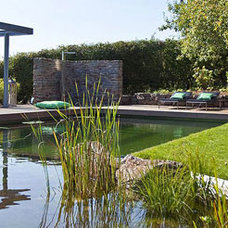 Contemporary Pool by Biotop US