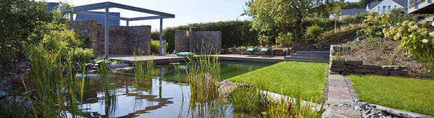 Contemporary Pool Residential Natural Swimming Pool