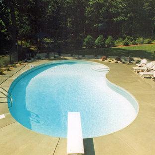 Imagen de piscina de tamaño medio tipo riñón