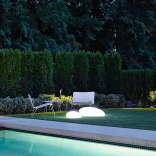 Ispirazione per una grande piscina monocorsia minimal rettangolare dietro casa con lastre di cemento