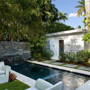 マイアミの小さい長方形トロピカルスタイルのおしゃれなプール (コンクリート敷き、噴水) の写真