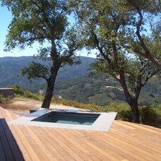 Modern Pool by Suzman Design Associates