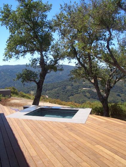 современный бассейн по Сузман Design Associates