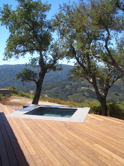 Modern Pool by Zeterre Landscape Architecture