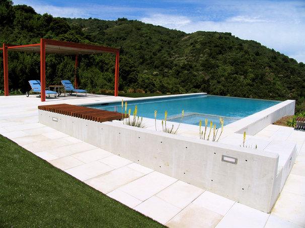 Contemporary Pool by Design Focus Int'l Landscape Architecture & Build