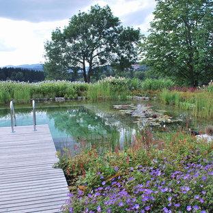 Ejemplo de piscina natural, contemporánea, grande, rectangular, con entablado