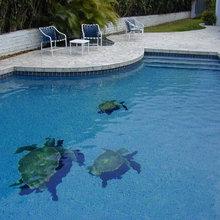 Sea Turtle Pool Tile Design - Swimming Pool & Hot Tub ...