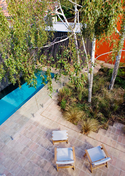 Contemporary Pool by Eco Outdoor AUS