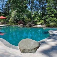 Pool by Landscape Techniques Inc.