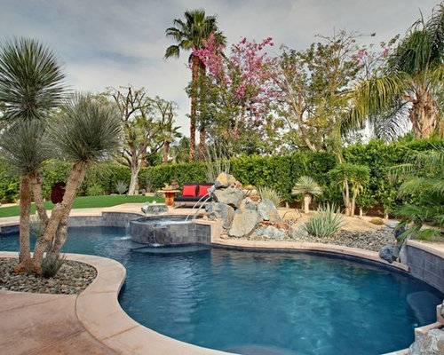 Freeform Swimming Pool Ideas, Pictures, Remodel And Decor