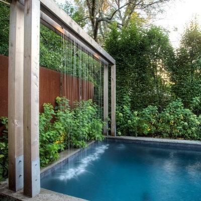 Example of a trendy rectangular pool design in Toronto