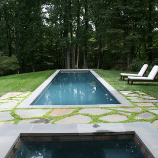 Inspiration for a timeless pool remodel in DC Metro