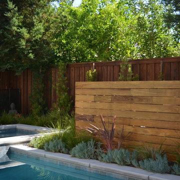 Small Modern Pool