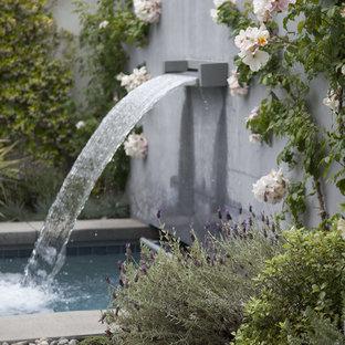 Small-Space Garden, Santa Monica