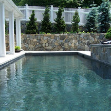 Traditional Pool by Samarotto Design Group
