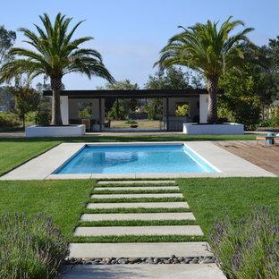 Idee per una piscina minimalista con pedane e una dépendance a bordo piscina